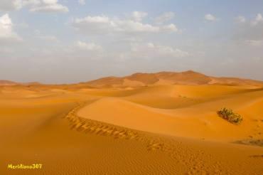 Sahara-desiderio-di-stelle-e-dune